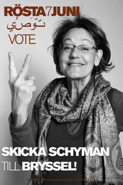 Schyman håller EU-valmöte i Karlskrona
