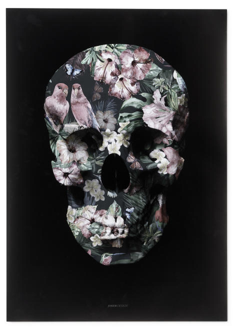 Tropical Scull
