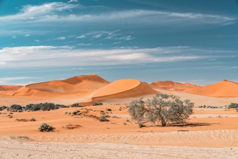 Alphaddicted_Roadtrip Namibia_13