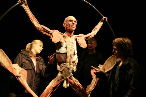 Världens bästa anatomilektion!