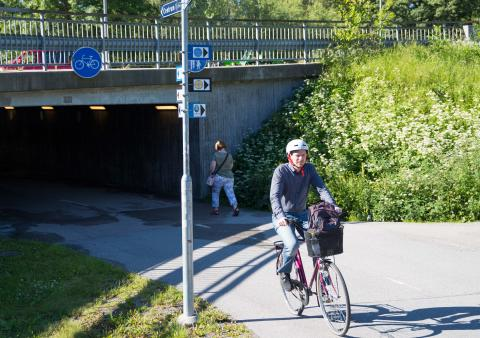Uppsala stiger i cykelranking