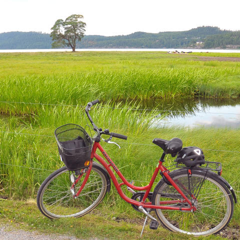 Alingsås satsar på cykelreseplanerare