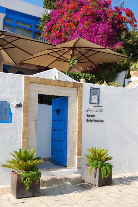 Klassiskt boende i Sidi Bou Said