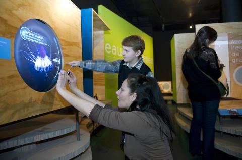 En djupdykning på Naturhistoriska riksmuseet