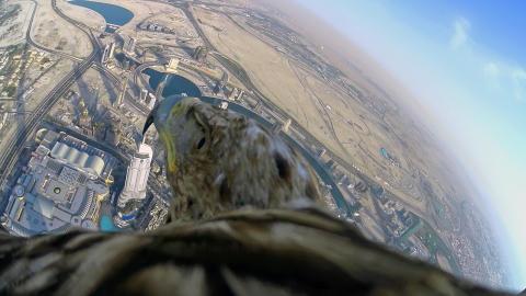 Sony & Freedom - Dubai HDR-AZ1