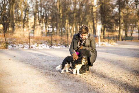 Yep på uppdrag – hundpromenader