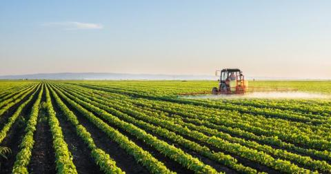 Fighting World Hunger with Sustainable Supply Chains