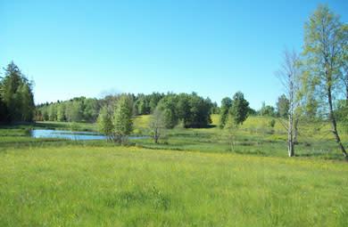 Invigning av naturreservatet Ramshytte ängar - Örebros nyaste naturreservat