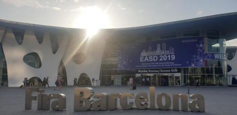 Rapport från EASD