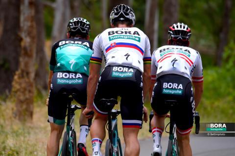 BORA-hansgrohe Santos Tour Down Under 2019_1