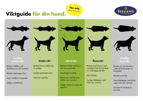 Svelands hundviktsguide