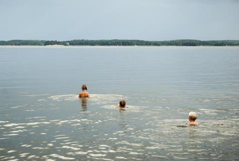 Inför årets badsäsong: Allt fler svenska EU-bad har utmärkt vattenkvalitet