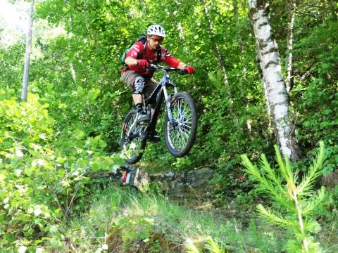 ​All-Mountain, Enduro oder doch Freeride?