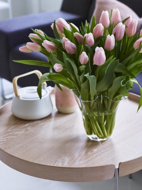 Tulipaner i rosa