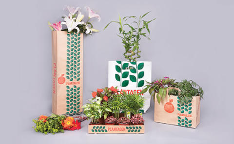 Swedbrand: Our Products - Machine Made Paper Bags
