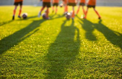 Katedralskolan startar upp idrottsinriktningar