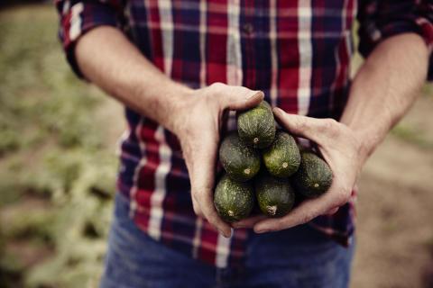 Orkla Foods Sverige på plats 9 av 190 i årets Hållbarhetsbarometer