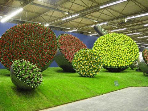 Floraliën Gent afbeelding 1