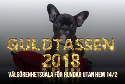 Välkommen på välgörenhetsgala till förmån för hemlösa hundar den 14 februari!