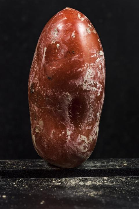 Migrant Tomatoes, fot. Francesco Amorosino