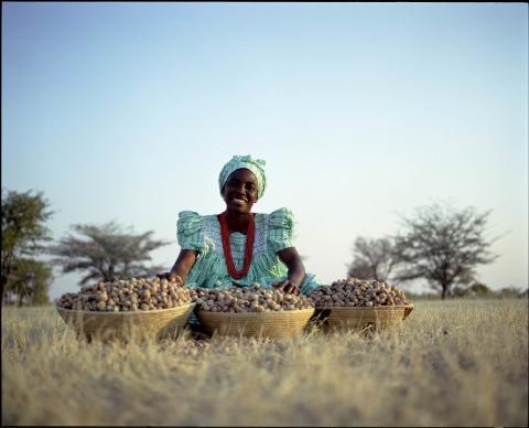 Kvinna med marulanötter