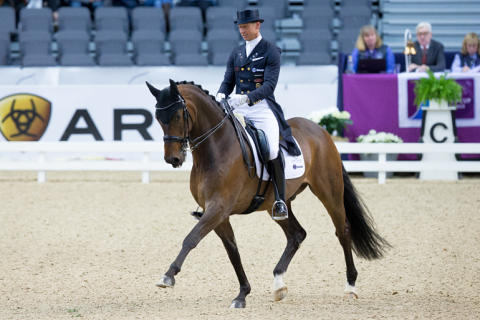 Patrik Kittels Delaunay - en ung häst med en lovande framtid