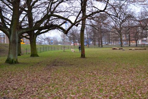 Vi inviger hundhägnet i Sturzen-Beckers park
