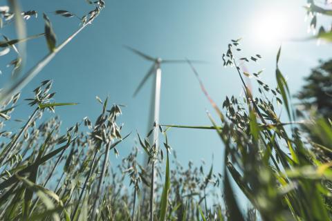 Kommuninvest planerar för grön emission