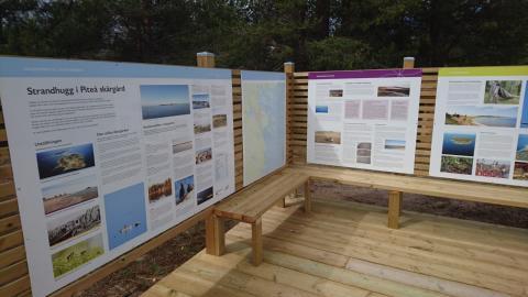 Ta del av utställningen om Sandängesstrandens natur och kultur.