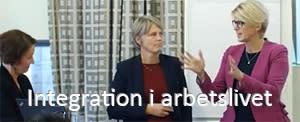 7 videoklipp från integrationsseminariet
