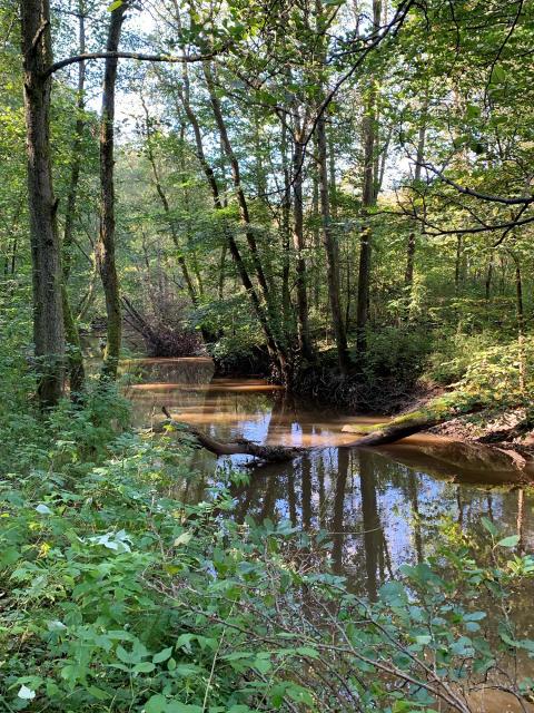 Beslutat av park- och naturnämnden  23 september 2019