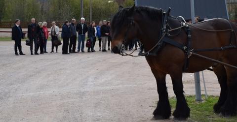 Siffror och fakta om hästnäringens politikerträffar
