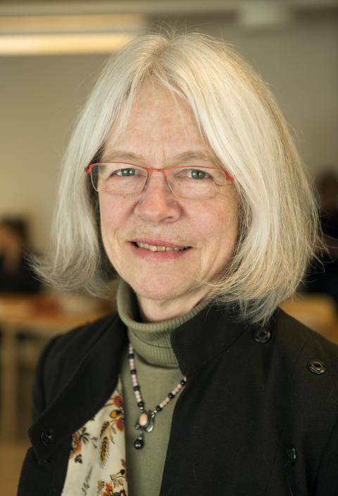 Nina Lykke, professor emerita inom genusvetenskap vid tema genus, Linköpings universitet