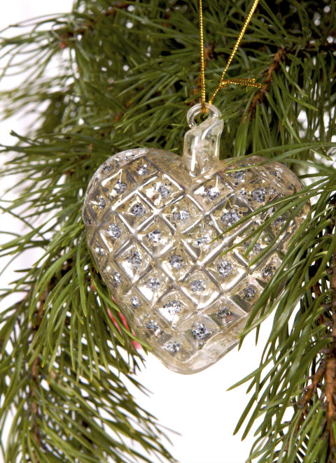 Danskinspirerad jul från Blomsterlandet