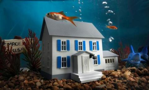 Consolidated Credit and Oppenheim Law To Host Free Seminar For Underwater Homeowners
