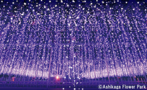 A selection of five special winter illumination spots that can be covered with a day trip or an overnight trip from Tokyo