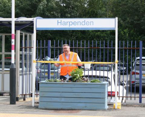 Harpenden gardening project
