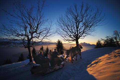 Pferdekutschenfahrt auf der Rigi