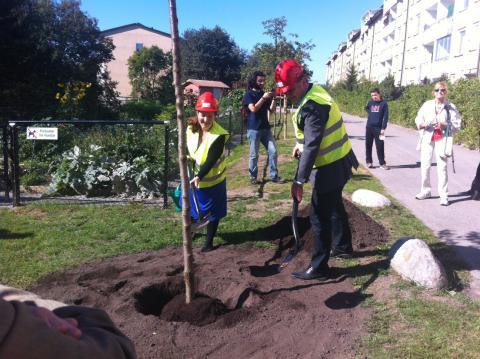 Kevius (M): Byggstart för studentlägenheter och hyresrätter i Bredäng