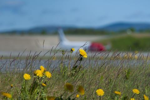 Norwegian lanserer direkteruter til Alicante fra Tromsø, Evenes og Molde