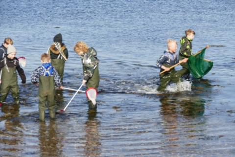 Udforsk fjorden 3