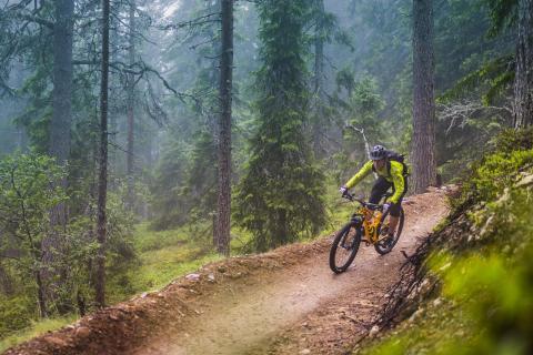 Biking i Dalarna.