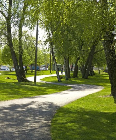 Göteborgarna vill bo grönt och centralt