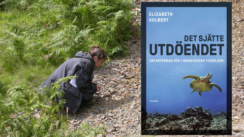 Pulitzervinnaren Elizabeth Kolbert till Sverige i mars