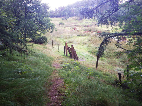 Rebild Kommune vedtager Natur- og Friluftspolitik