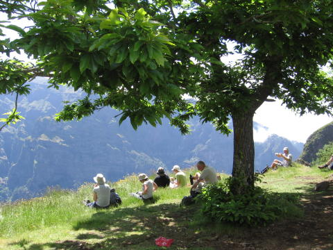 Ramblers Walking Holidays: The Floating Gardens of Madeira