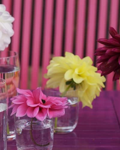 Fargerike blomster