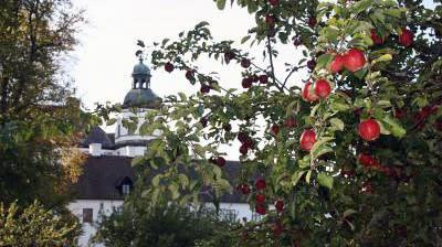 Äppeldagen på Skoklosters slott i september