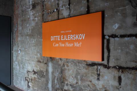 Ditte Ejlerskov - Can You Hear Me? 2019