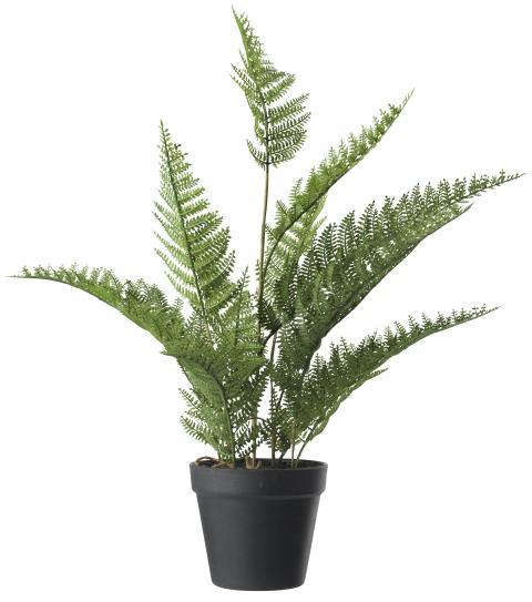Kunstig plante TOM H55cm med potte (99 DKK)